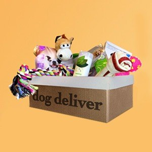Scatola di regali a sorpresa per il tuo cane DogDeliver