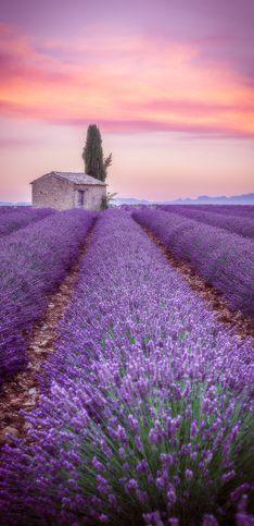Vacances en France : 30 endroits magiques à découvrir au plus vite