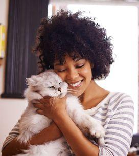 Quelle race de chat vous correspond selon votre signe astro ?
