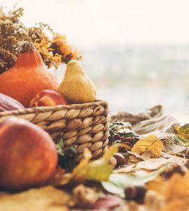 Nos recettes de saison pour le mois de novembre