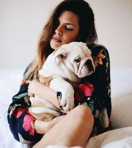 Carlos Ríos, último en sumarse a la moda: famosos obsesionados con sus bulldog