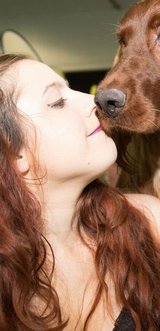 I cani più belli del mondo: ecco gli amici a quattro zampe che conquistano le giurie!