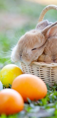 Alla scoperta delle tradizioni di Pasqua nel mondo!