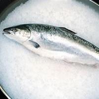 Et si on cuisinait le saumon entier?