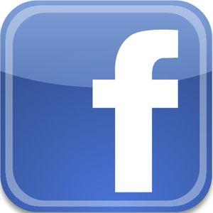 Facebook Une Brindille à Paris