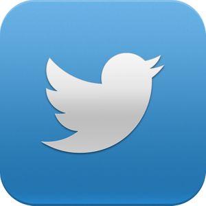 Twitter Twiggy