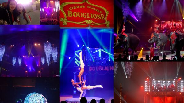 Surprise  -  Cirque Bouglione, mais quel spectacle !