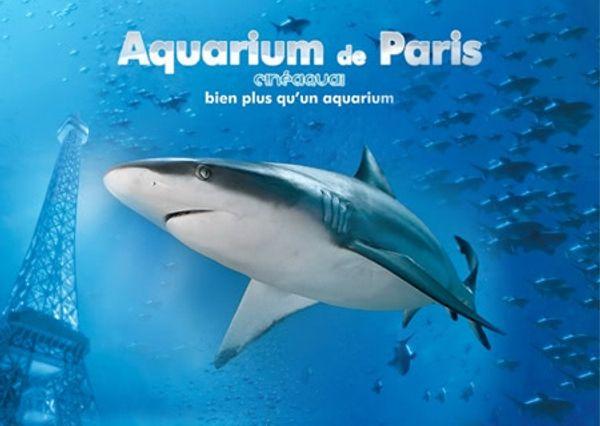 Découverte de l'aquarium de Paris
