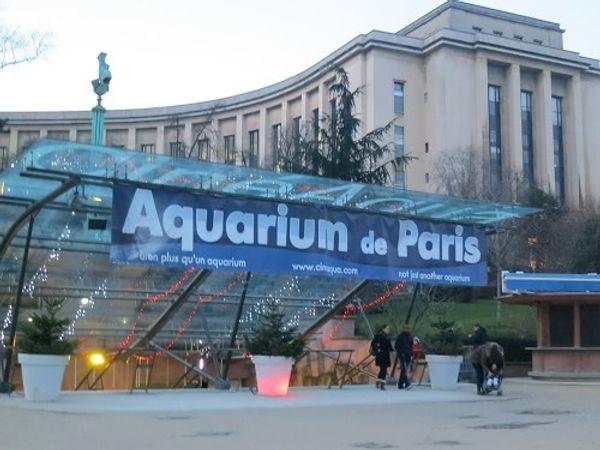 La fête des Mères à l'Aquarium de Paris
