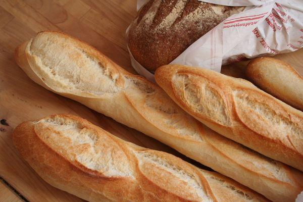 Une boulangerie Vendéenne en compétition bientôt sur M6