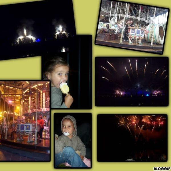 IDEE SORTIE: Le feu d'artifice de Fontainebleau le 27/08/12 A voir absolument!!