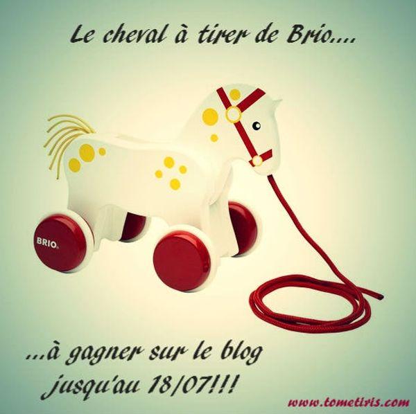 130 ans: Bon anniversaire Brio!!! + 1 cheval à tirer à offrir