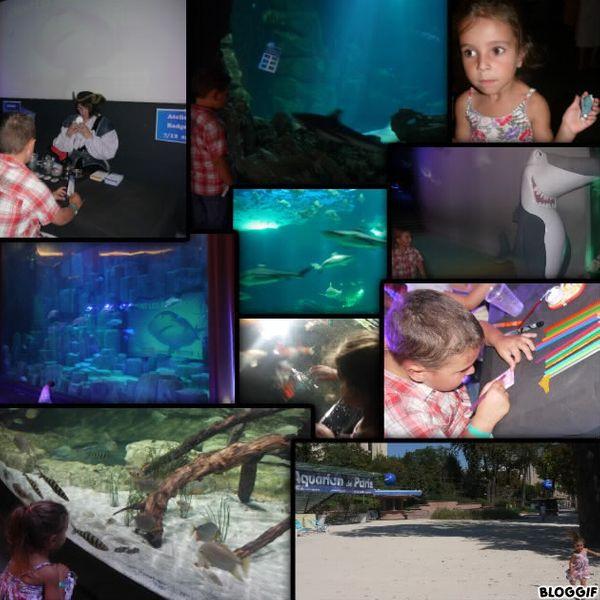 Visite + nouvelle expo Vivent les requins à l'Aquarium de Paris (+2 places à gagner)