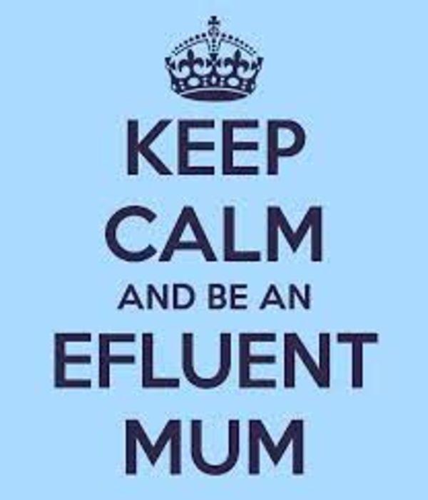 les E-Fluent Mums & Dads #2 le 4/12/2013 c'était quoi ????