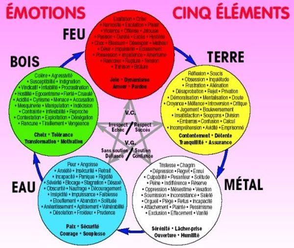 La Kinésiologie, un sujet vaste et profond!!!!