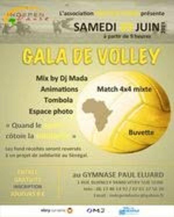 Gala de Volley le 29 juin 2013 a Vitry sur seine
