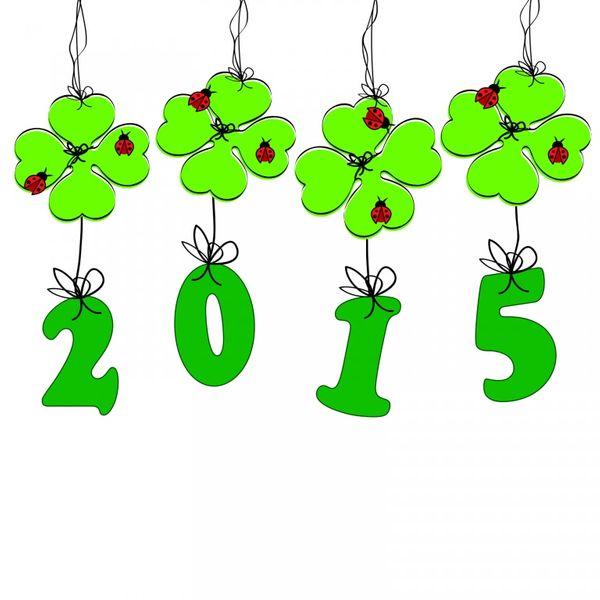 Aurevoir 2014 et bienvenue a 2015