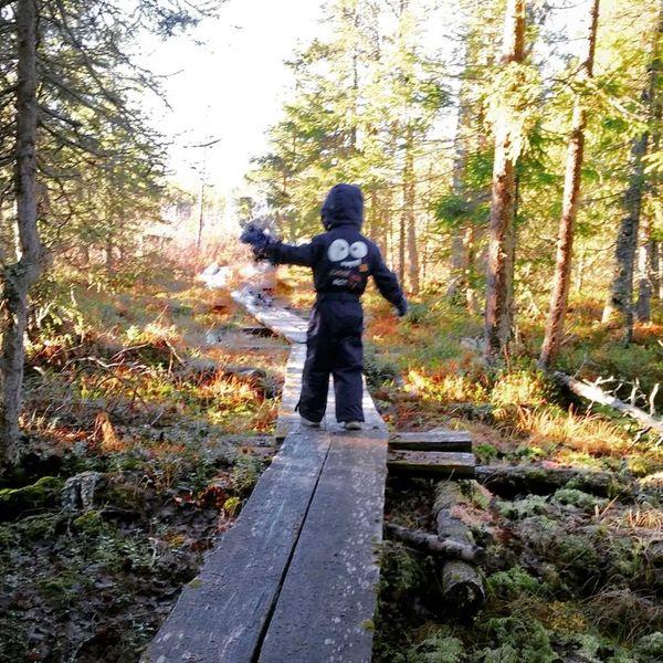 Comment rendre les balades en forêt ludiques