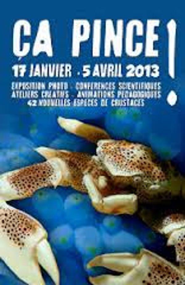 Nouvelle expo à l'Aquarium de Paris: Ca pince!!