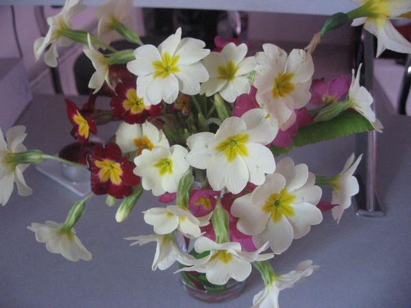 Des jolies fleurs pour maman