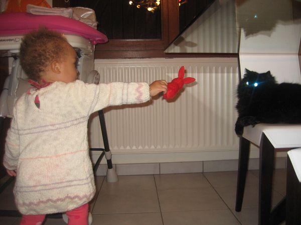 Le bb qui martyrise le chat!
