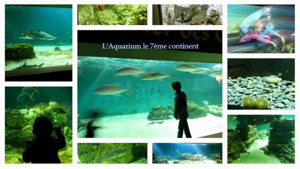 Idée 6: Pourquoi pas la Vendée comme destination pour vos vacances ?