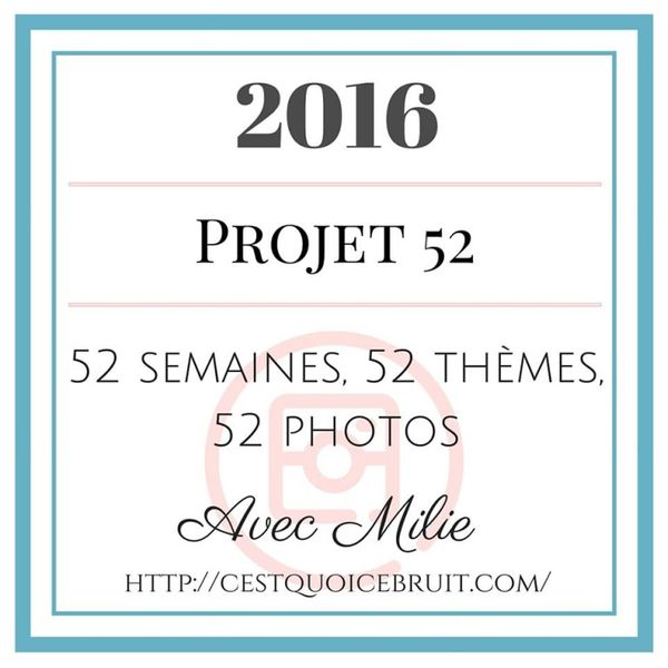 Projet 52 - 2016: Lire