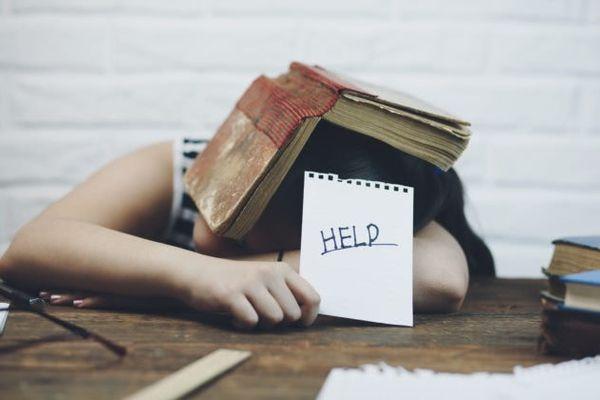 Les applications à ne pas manquer pour aider vos enfants à faire leurs devoirs.