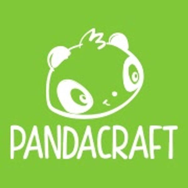 Notre activité découverte avec Pandacraft