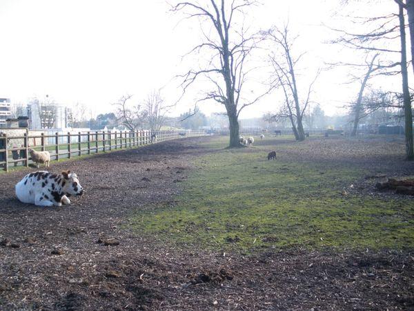 Le Parc Pierre, une adresse à ne pas louper à Saint-Geneviève des bois (91)
