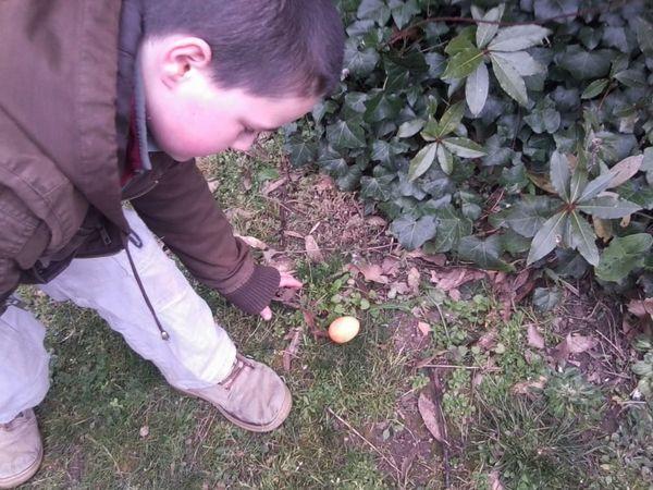 Chasse aux oeufs de Pâques épisode 2