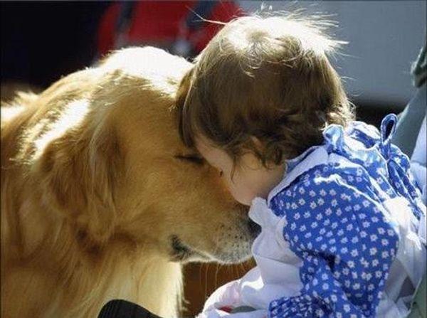 Rôle de l'animal dans la vie de l'enfant