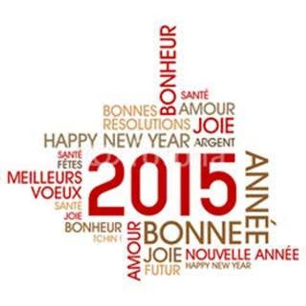 Bonne année 2015 à tous - alors vos résolutions pour cette année ?