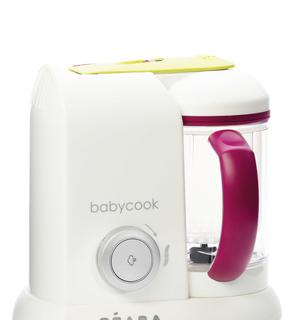 Babycook Book - 85 Recettes de papa-chef