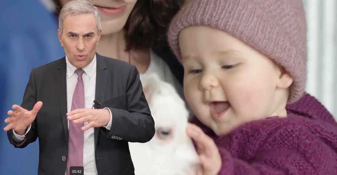 Le lait de chèvre, une préparation infantile pour tous