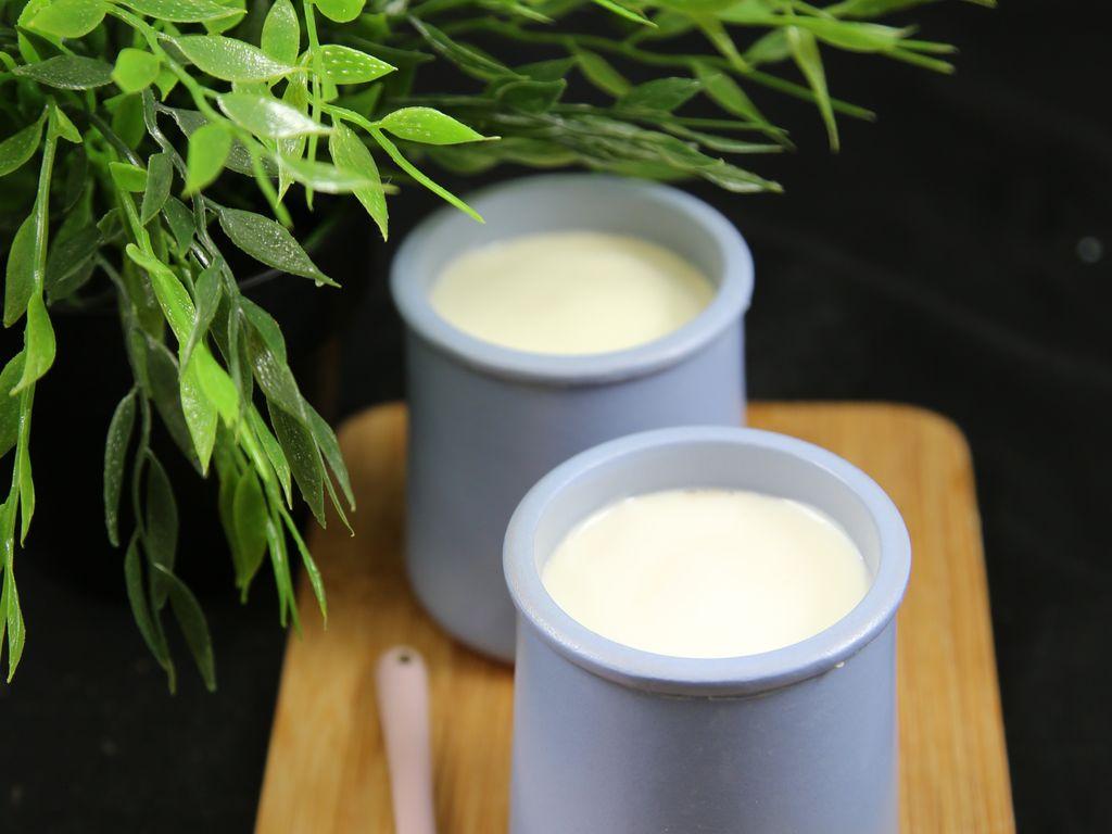 Yaourts maison sans yaourti re la casserole et au four ou la cocotte recette de yaourts - Fabrication de yaourt maison sans yaourtiere ...