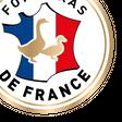 Logo Le Cifog
