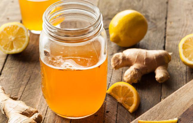 Kombucha maison au citron et gingembre
