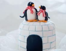 Mini-Törtchen 'Pingu'