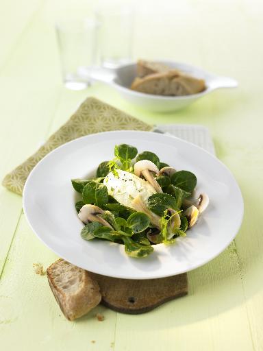 Feldsalat mit gehobelten Champignons und Frischkäsenocken