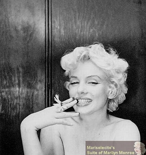 Marilyn Monroe - Photo posted by bluyeas