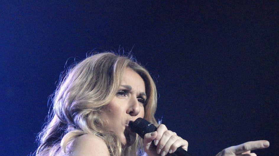 Céline Dion : Elle montre sa culotte en concert