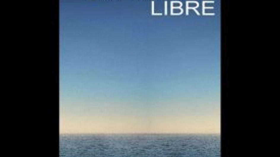 Nicolas Sarkozy : Les meilleurs détournements de son affiche