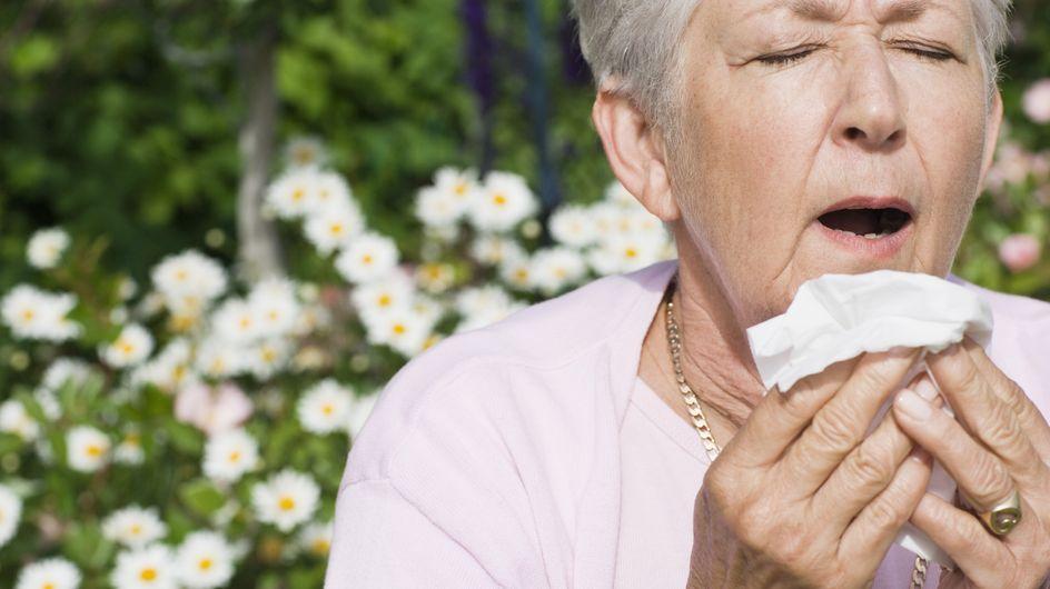 Allergies : Attention aux pollens d'arbres !