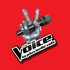 The Voice : Patrick Bruel a dit non au show de TF1