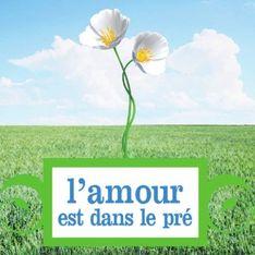 L'amour est dans le pré : La deuxième télé-réalité préférée des Français