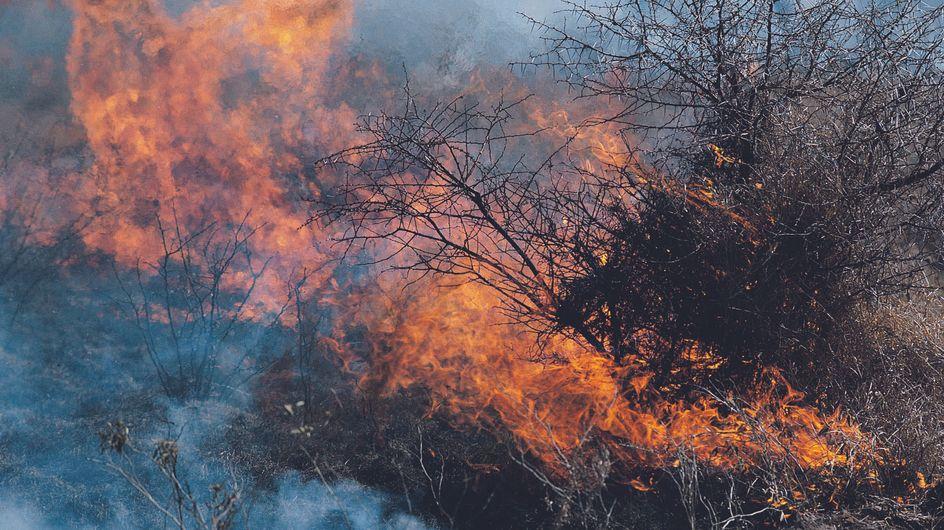 Un incendie en Espagne fait un mort et entraîne l'évacuation de milliers de personnes