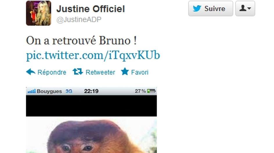 Justine de l'Amour est dans le pré : Elle dérape vers le racisme