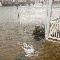 Ouragan Sandy : Un requin dans la ville (Photos)