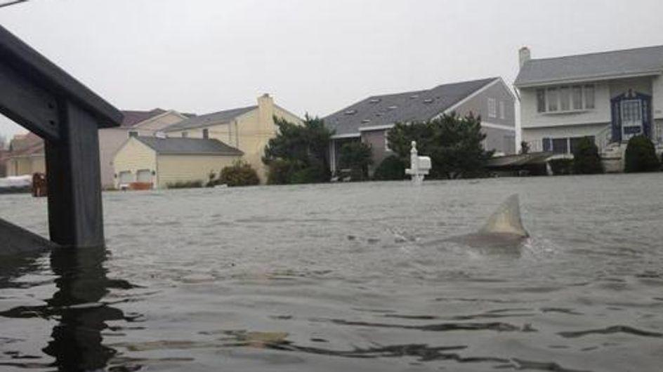 Ouragan Sandy : Les photos truquées les plus folles !